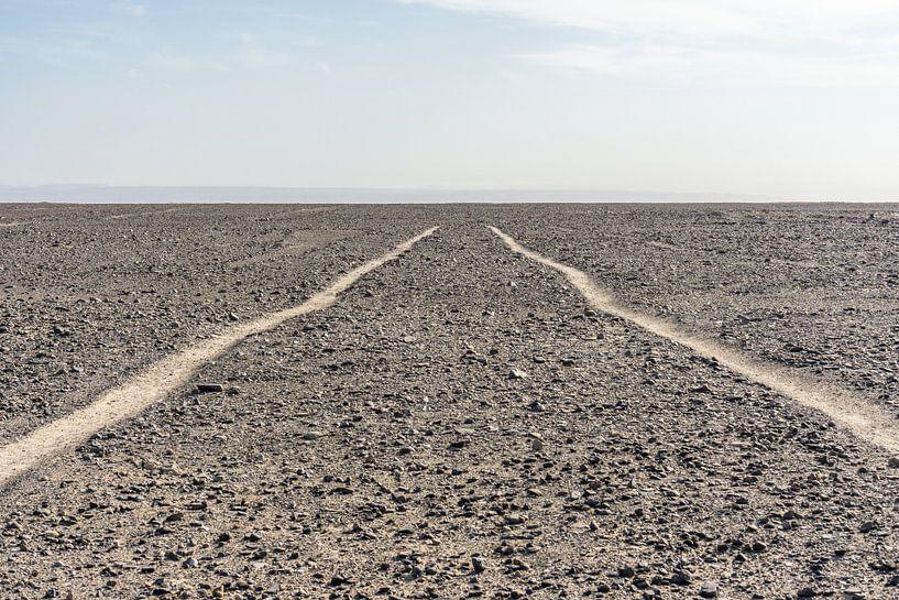Nazca-Linien von Joost Potma