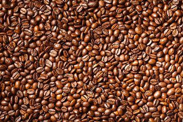 Kaffeebohnen von Victor van Dijk