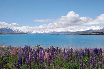 Nieuw Zeeland, New Zealand von Yvonne Balvers