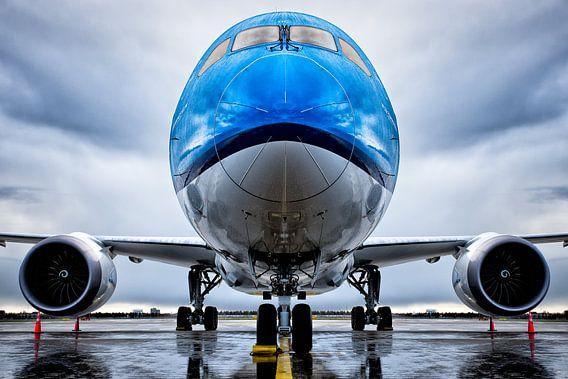 Symmetrie Boeing 787-9 Stijl