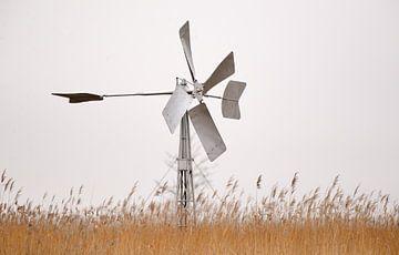 windmolen giethoorn van Petra De Jonge