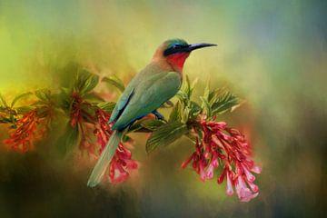 Bienenfresser mit rotem Schlund auf Blüte mit tropisch grünen Farben von Diana van Tankeren