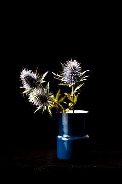 Drei blaue Disteln in Vase von whatido intheshadow