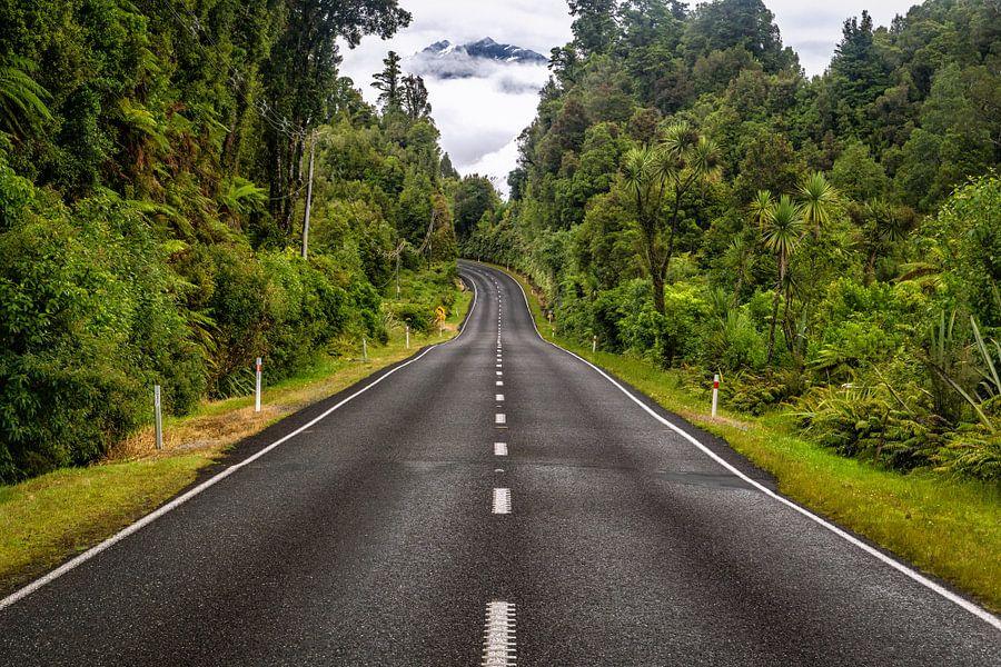 Weg door Nieuw Zeelandse natuur