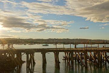 Nieuw Zeeland - Haven van Maurice Weststrate