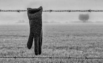 Eenzame handschoen van Kees Gruijters