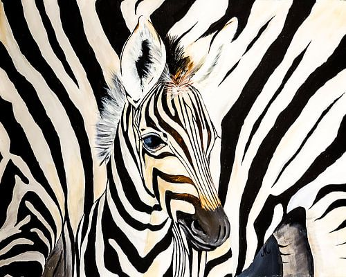 Zebra met moeder zebra canvas zebra met moeder zebra poster of jonge zebra close up angelique van den berg thecheapjerseys Gallery