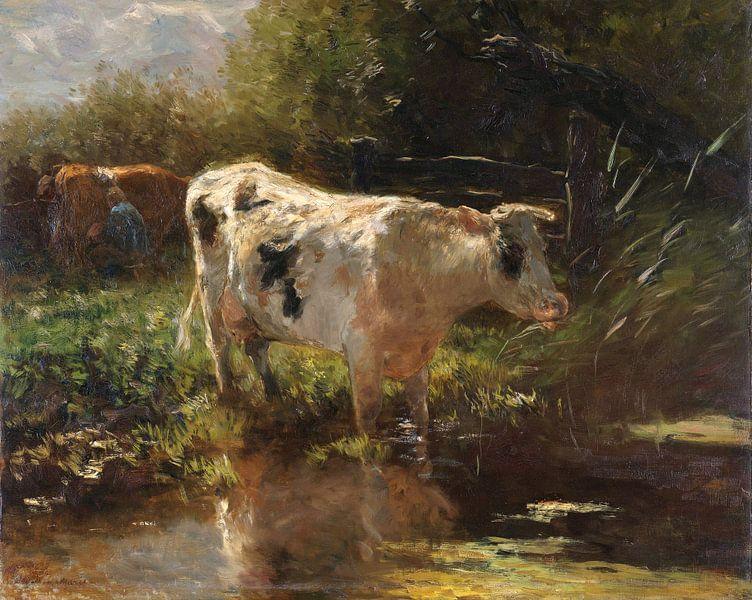Kuh auf der Grabenseite, Willem Maris von Meesterlijcke Meesters