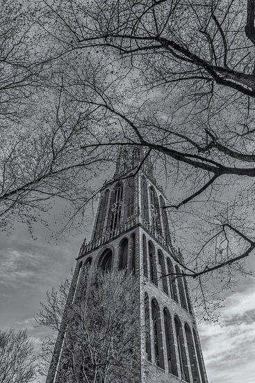 Domtoren Utrecht vanaf het Domplein op een zonnige dag - zwart-wit - 2