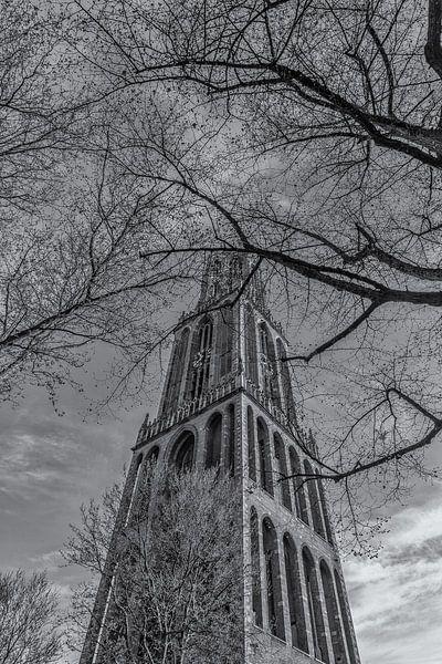 Domtoren Utrecht vanaf het Domplein op een zonnige dag - zwart-wit - 2 van Tux Photography