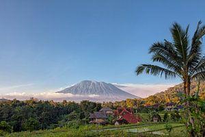 Rijst terrassen met de heilige berg Agung op achtergrond, Bali, Indonesië
