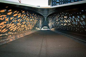 Parkbrug Antwerpen van Rene Van Putten