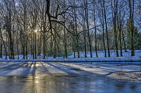 Winter in Park Sonsbeek