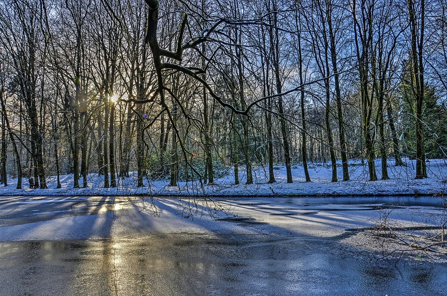 L'hiver au Parc Sonsbeek