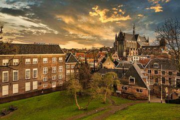Leiden centrum van FotoSynthese