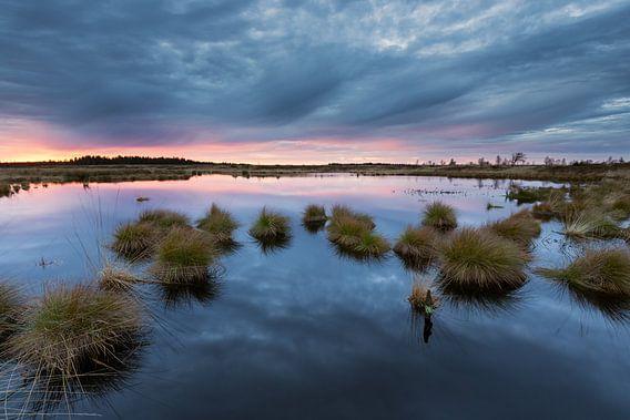 Swamp Sunset van Rob Christiaans