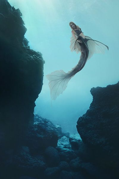 Mermaid in black van Elianne van Turennout