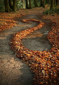 Herfst van Mies Heerma