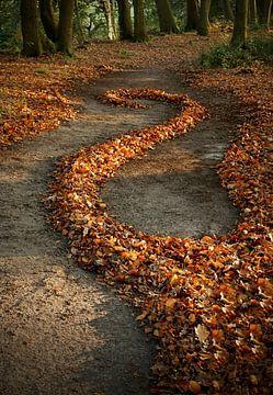 Herbst von Mies Heerma