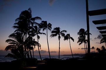 Sonnenuntergang vor Maui, Hawaii von t.ART
