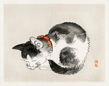 Schlafende Katze von Kōno Bairei (1844-1895). von Studio POPPY
