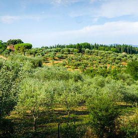 toscaans landschap van Thomas van Houten