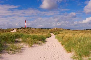 Strandweg - Insel Amrum van Angela Dölling