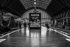 Op reis in Frankfurt station van