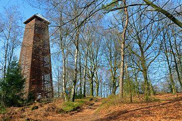 Uitkijktoren in het bos van Jaimy Buunk