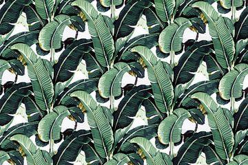 Matinique Banana Leaf van