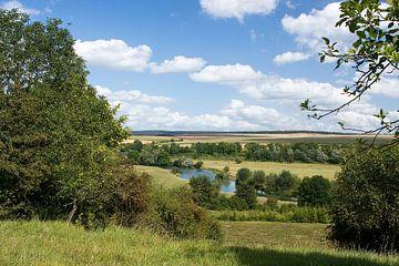 Rivier La Meuse (de Maas) in Frankrijk van Bert Meijerink