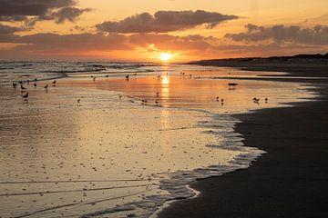 Sonnenaufgang auf Ameland von Jefra Creations