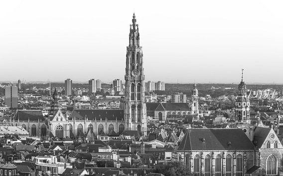 Onze Lieve Vrouwekerk in Antwerpen van MS Fotografie