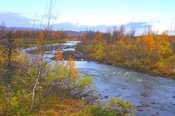 Natuurlijk landschap in Zweeds Lapland van Thomas Zacharias