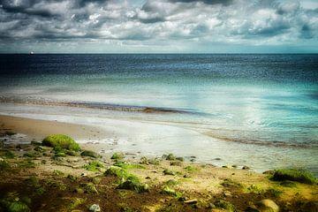 Magical Baltic Sea van