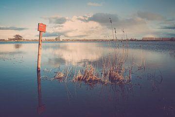 Hochwasser in den Überschwemmungsgebieten der IJssel von Fotografiecor .nl