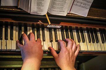 Orgelspeler sur Wybrich Warns