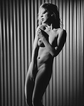 Schöne nackte Frau, die vor einem industriellen Hintergrund fotografiert wurde. #7558 von william langeveld