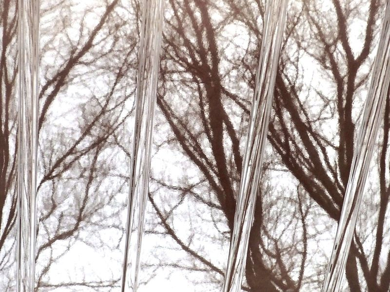 Tree Magic 23 van MoArt (Maurice Heuts)