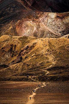 Wandelaars dalen af van de Rode Krater, Tongariro Alpine Crossing van Paul van Putten
