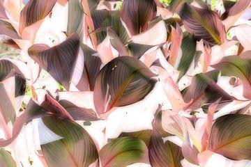 Roze en groene tinten van Veerle Van den Langenbergh