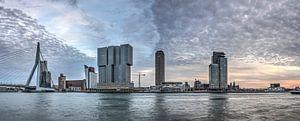 Panorama Kop van Zuid Rotterdam