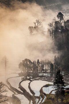 Rijstterrassen bij Duoyisha, Yunnan, China van Paul de Roos