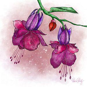 Blumenmotiv - Lila Fuchsien