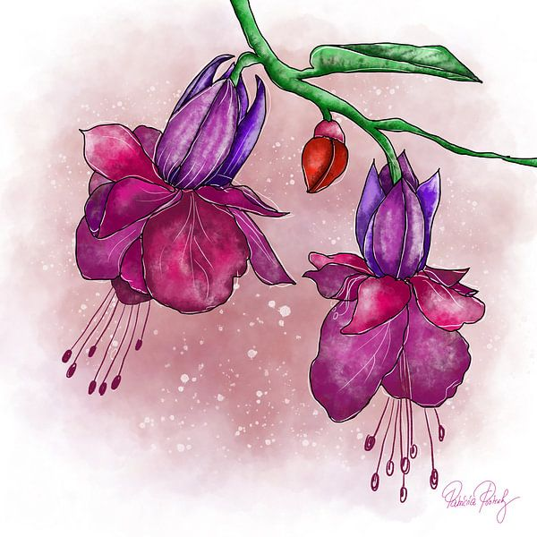 Blumenmotiv - Lila Fuchsien von Patricia Piotrak