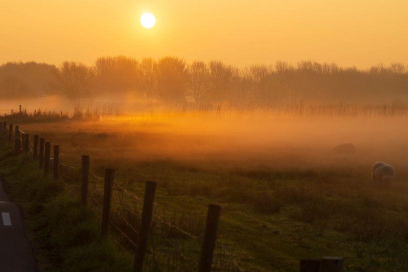Nebel bei Sonnenaufgang. von Anneke Antonides