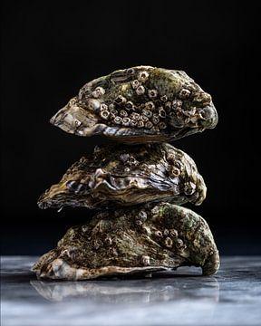Drei Austern von Anoeska van Slegtenhorst