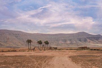 Huisje met palmbomen op Fuerteventura La Olivia van