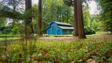 Le hangar à bateaux Blue Royal dans la forêt sur Fotografiecor .nl