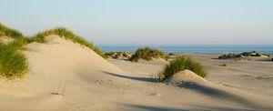 Strand Terschelling von